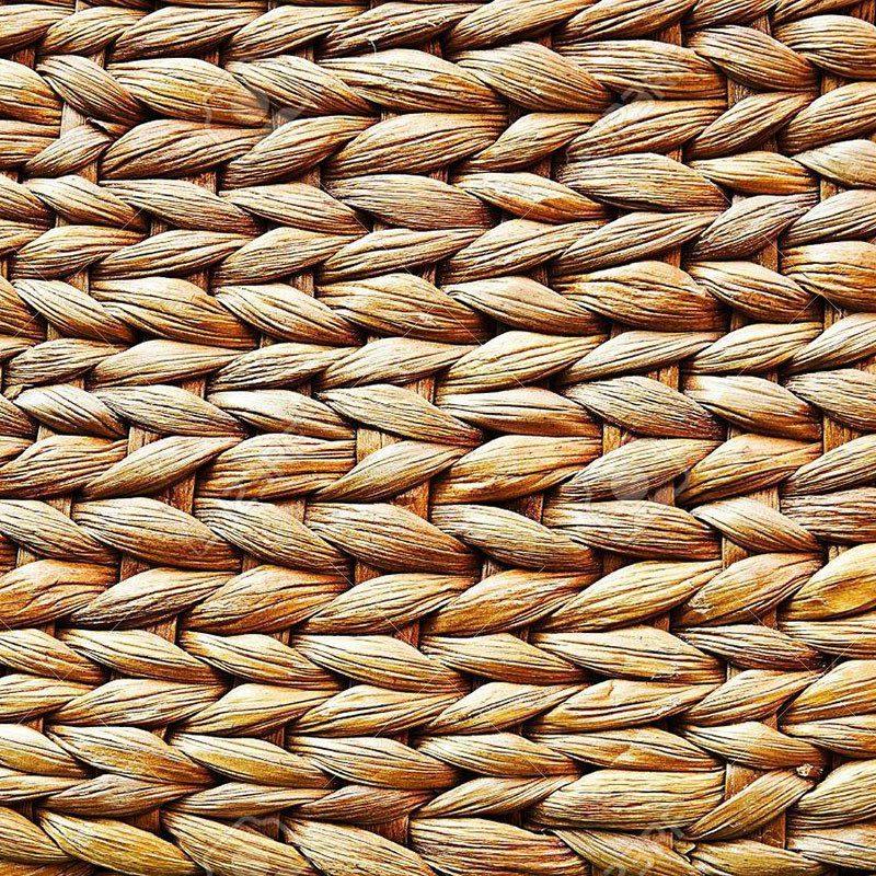 編組水ヒヤシンス繊維